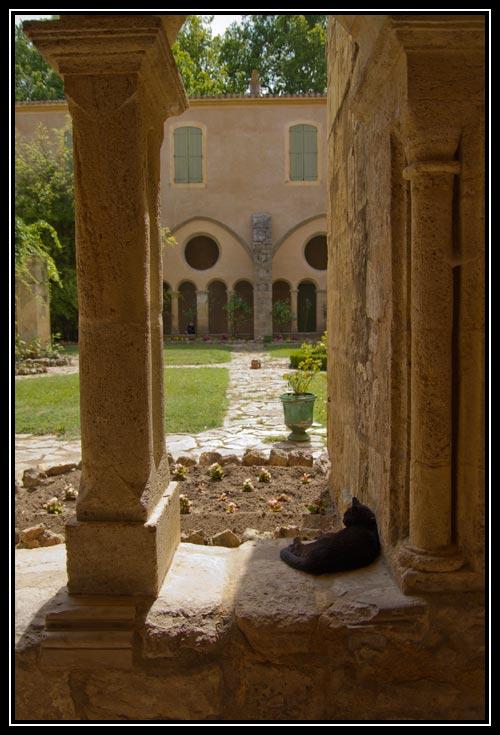 Cloitre de l'abbaye